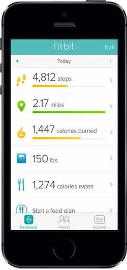 Fitbit Interface