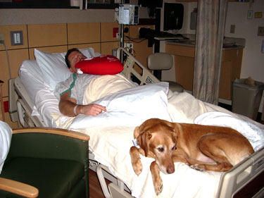 Dyno, Dog Therapist Visits Heart Surgery Patient and Owner, Erik