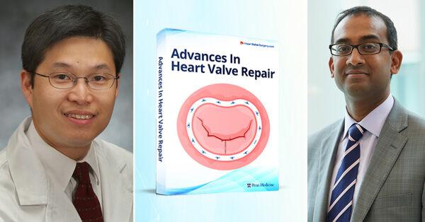 Dr. Wilson Szeto, Dr. Pavan Atluri, Heart Valve Repair eBook