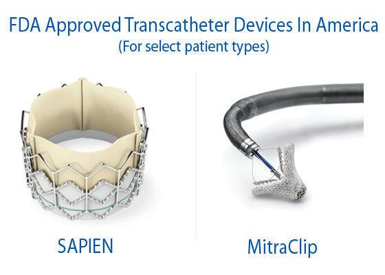FDA Approved Transcatheter Valve Devices