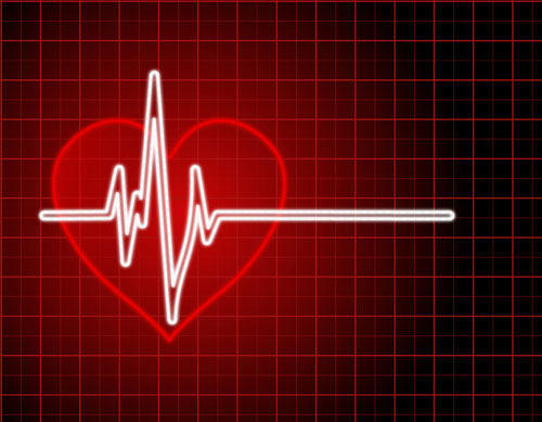heart-stop Arum metallicum cntd.....