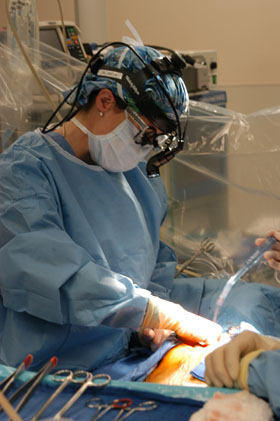 Female Heart Surgeon