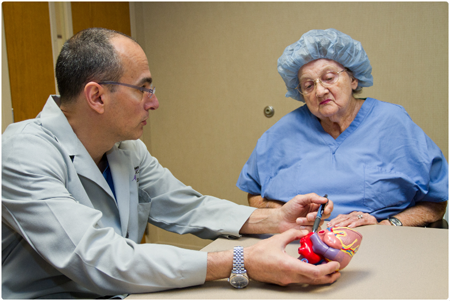 Surgeon Holding Plastic Heart With Patient