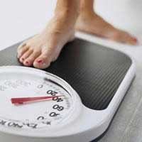 Top 10 weight loss diets 2013