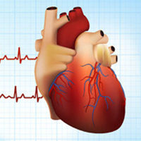 Atrial Fibrillation & Mechanical Valve Replacements