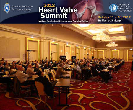 Heart Valve Summit 2012 - Conference Room